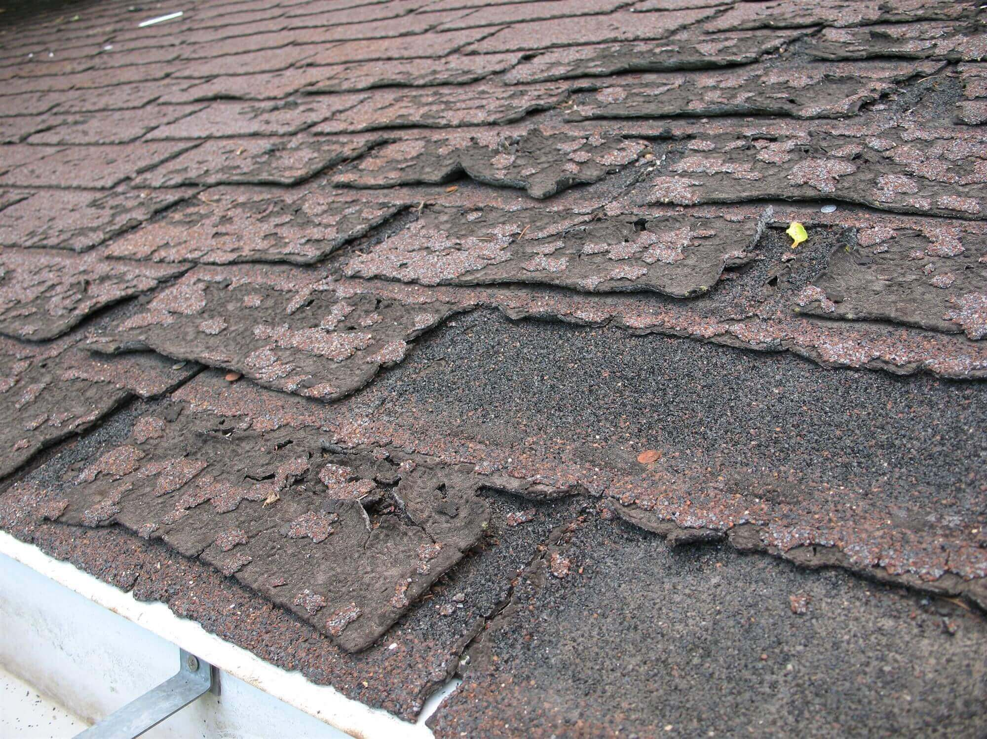 Curling Shingles on a Wisconsin Roof