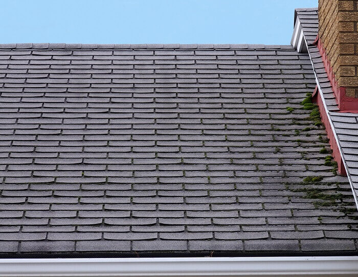 Professional Reroofing asphalt roof green bay wi